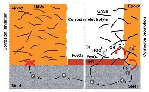 宁波材料所在石墨烯/聚合物复合防腐涂层方面取得进展