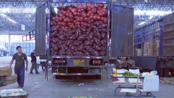 【蔬菜】蔬菜、鸡蛋和肉类近期价格走向如何 记者深入