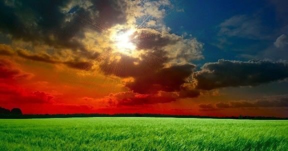 深入人心的经典说说,句句充满智慧,送给寂寞的自己