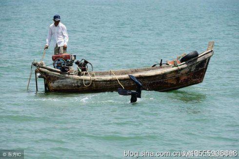 我是资深大连捕捞海参从业者,说点掏心窝子的话!