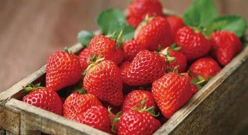 「草莓」三种颜色不均匀不好吃的水果,草莓、西瓜、西红柿,原因知道吗?