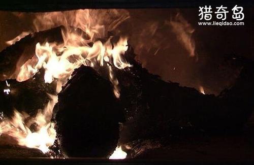 火葬场工人吃130具女尸,是真实还是谣言(在印度真实发生过)