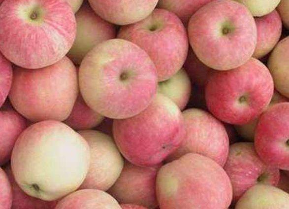 """【早上】早上空腹食用一个苹果,3大好处""""找上门来"""",最后一种必须知道"""