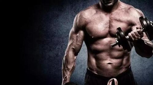 肌肉生长到底需要多少蛋白质?