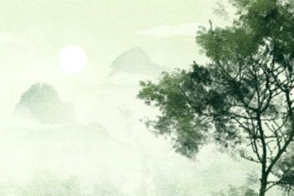 『生日』农历二月十九是哪位菩萨的生日 是观世音吗
