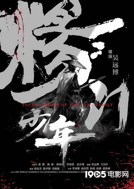 """""""杨家将""""系列登陆电影频道《杨门少年》获好评"""