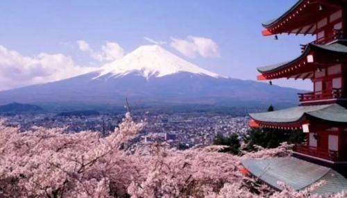 「警报」拉响警报日本突然传来一则坏消息,这是要彻底投入美国怀抱