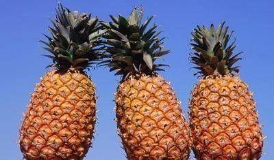[挑选菠萝]买菠萝的时候,最好不要让老板拿,记得这三招