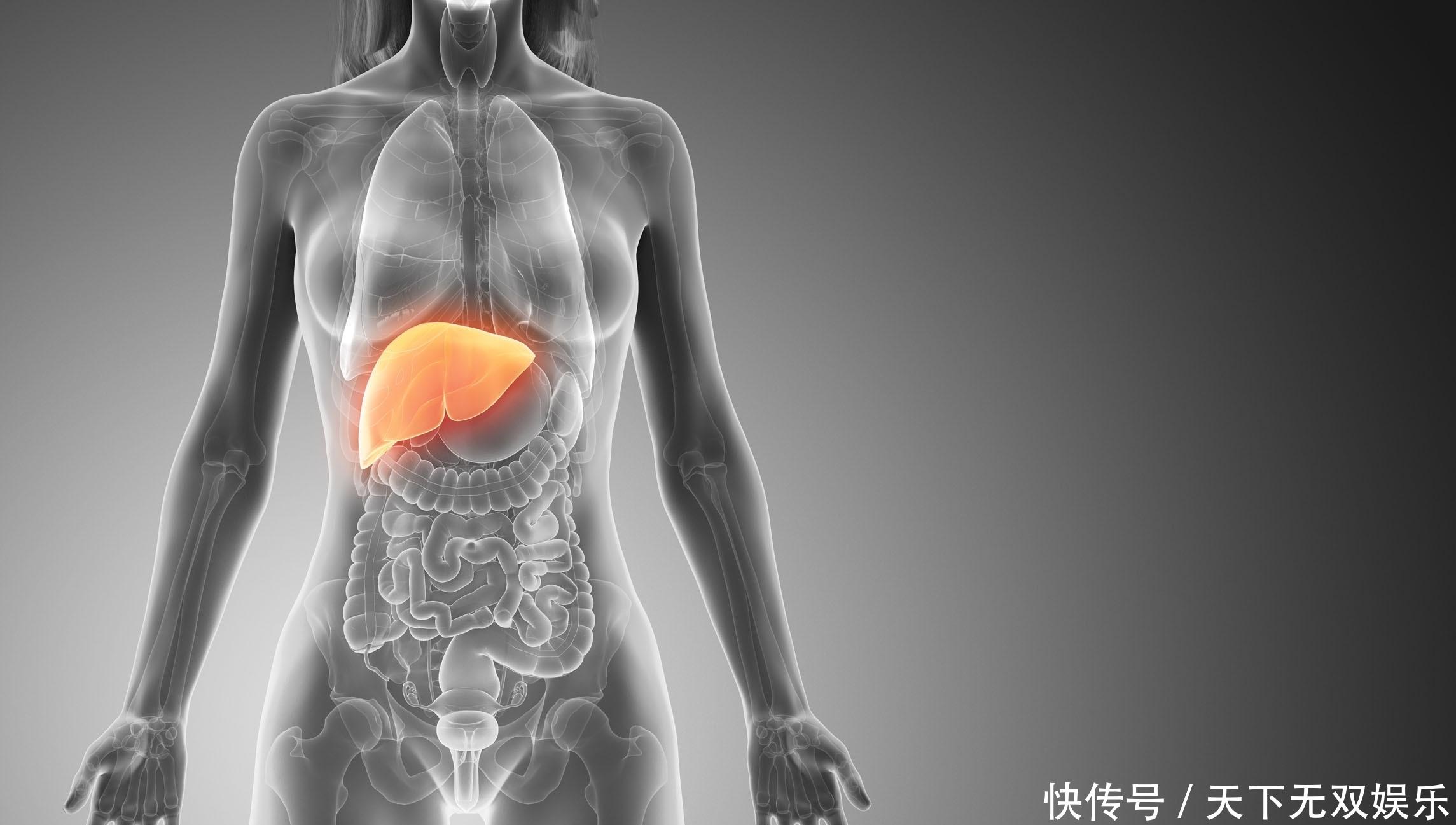 「肝癌」肝癌预警:身体若有这3个表现,或需警惕肝脏癌变