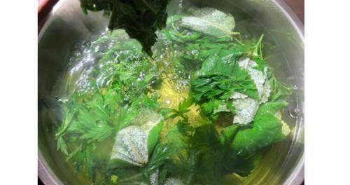 『用艾叶煮水洗头』用这种野草煮水洗头,一个月后,身体会出现这些惊喜变化,早洗早好!