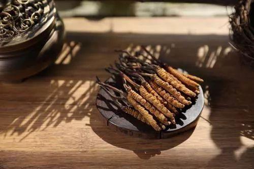 虫草知识吃冬虫夏草上火吗?上火的人吃冬虫夏草行吗?