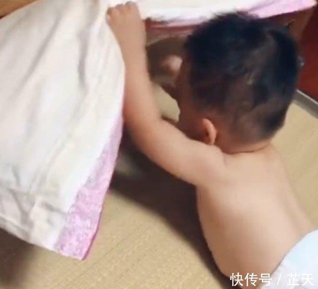 抖音短视频小姐姐与海豚水中接吻视频之两岁被发现后亮了