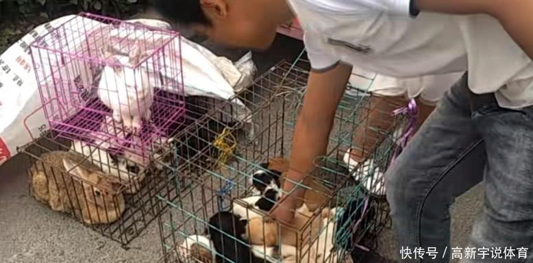 <b>大爷卖狗50一只,小伙在一群土狗中发现了它,当时两眼发光</b>