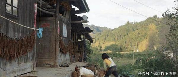 农村5大怪现象,城里人看不懂,老农民看不惯你们村有几种!
