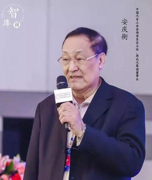 智库说丨安庆衡:对中国电动汽车发展应充满信心