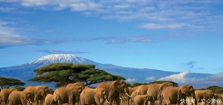 非洲大陆为什么干旱严重