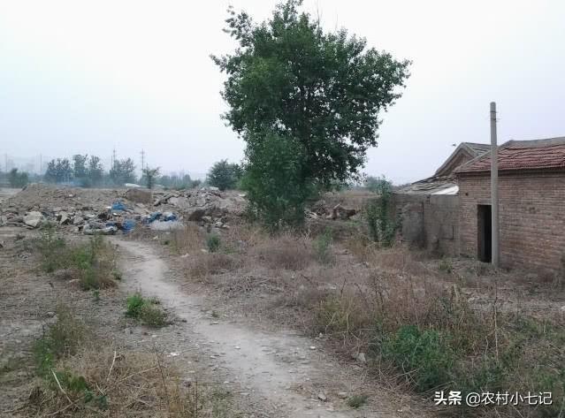 农村成空心,土地被搁置荒芜,农村荒芜的土地该怎么办?