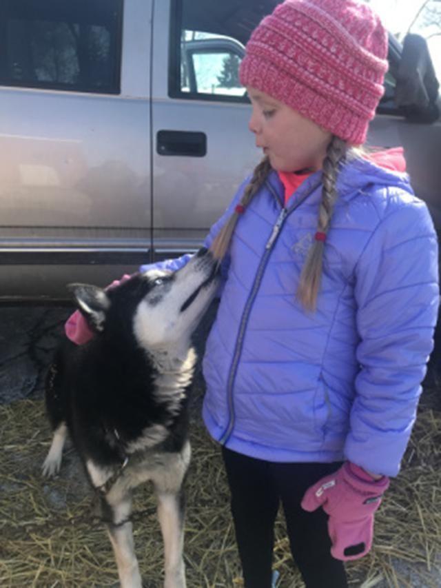 7岁女孩被警犬治愈,本来手术完很痛苦,见到狗狗后立刻有精神