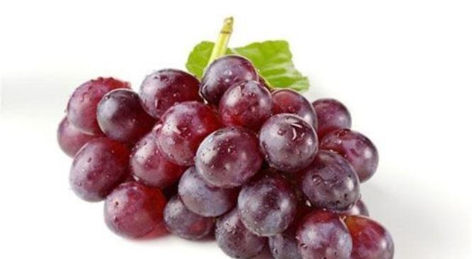 对身体最好的3种食物,排毒养颜、滋润肌肤,早吃早受益!
