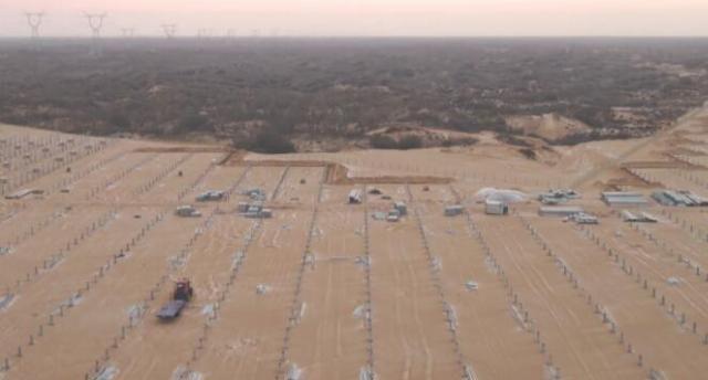 央视调查:华能建光伏电站 砍沙漠10万棵树?