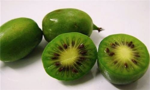 猕猴桃@想要身体好,不妨多吃3种食物,美容养颜,身体棒棒哒!