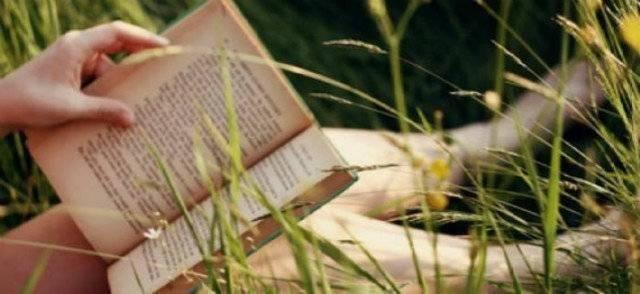 世上并无必看之书,不必逞强,任风吹哪页读哪页