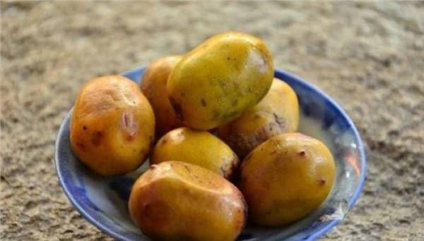 『乡下』这种野果在乡下,许多80后人把它当作小吃,现在已经很少见了