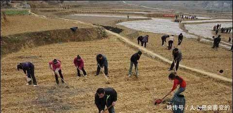 明年起,农民要面对2个危机,第1个家家逃不掉,农民早作准备