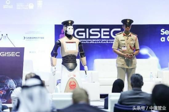 壕无人性!迪拜的黑科技