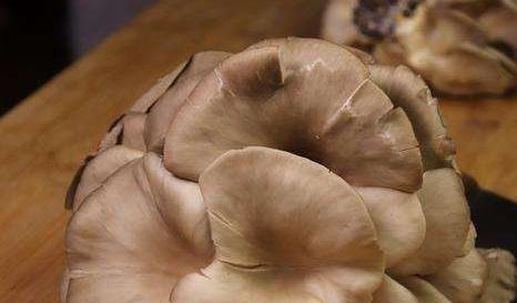 「面粉」油炸蘑菇,到底是用淀粉还是面粉其实都不是,让大厨来教你