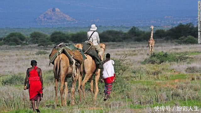 """为什么去非洲旅游时,千万不要捡地上的""""玉石""""?捡了会怎样?"""