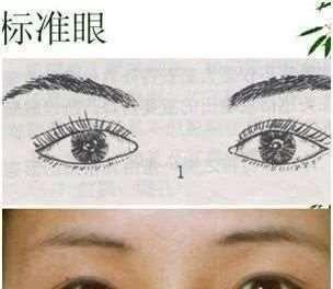 古相法入门:不同眼睛不同命,对照一下你是哪一种?