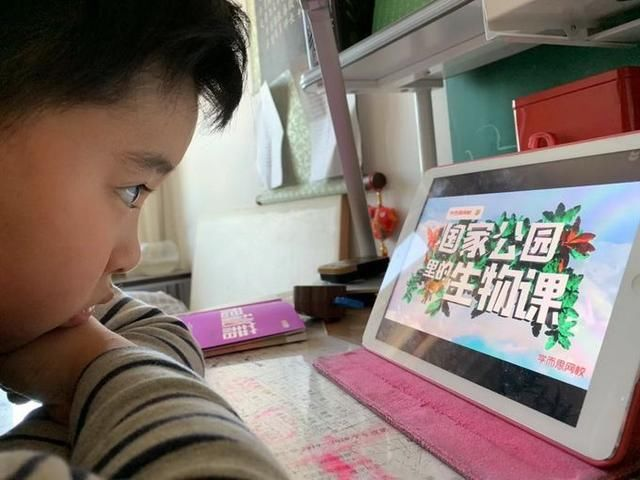北京中小学春季学期教学安排发布,期末考试严控难度各区实施