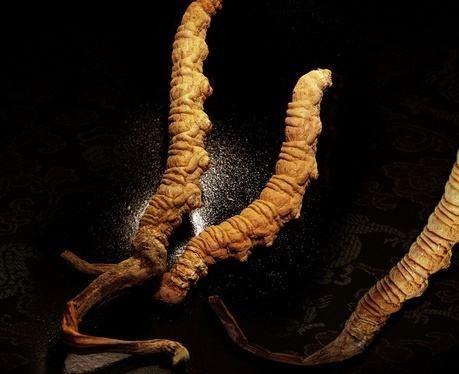 藏区自述玉树冬虫夏草独有的味道是什么?