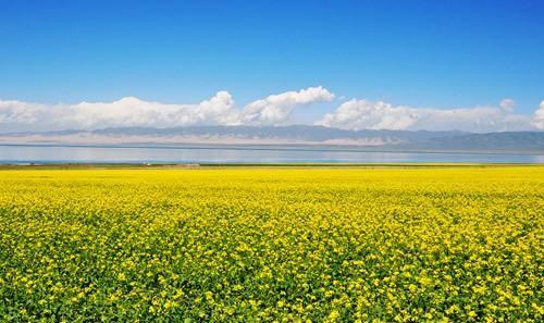 到青海,不只有青海湖,还有很多世人心向往之的地方