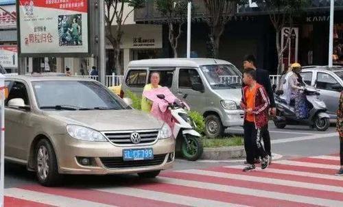 """""""停车让行""""被叫停?专家给出这样的建议,车主:实在是太扎心!"""