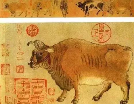 中国现存的五大奇珍异宝 - hnzzlzyno1 - hnzzlzyno1的博客