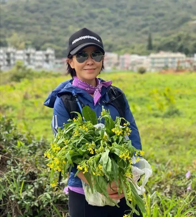 『摘菜』刘嘉玲乡下摘菜,不包装的脸显得比较老,能这么实在真难得啊