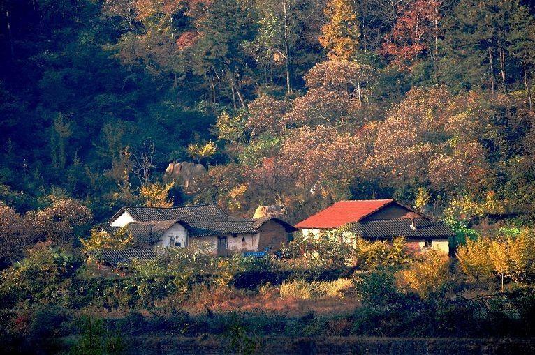随州人口有多少人口_湖北5个人口最少的城市 随州居然数第2